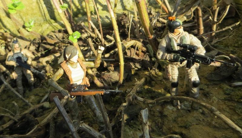 Selvaland, mes soldats en action - Page 11 Img_4810