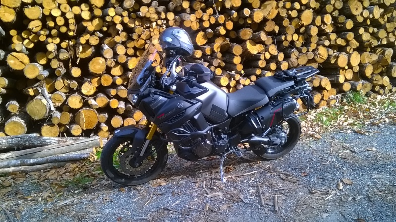 Vos plus belles photos de moto - Page 6 Wp_20113