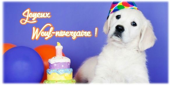 Joyeux anniversaire Virgo No Shaka 90494710
