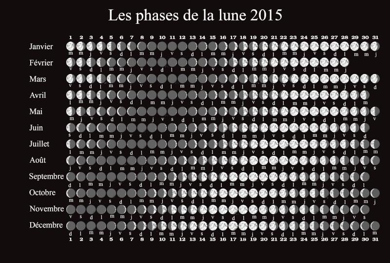 Le calendrier lunaire 2015 pour bien jardiner Phases13
