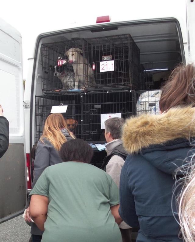 Rapatriement camion du 4 octobre 2015 - Arrêts à SAVERNE et en RP (ARPA RIS ORANGIS) - Page 7 110