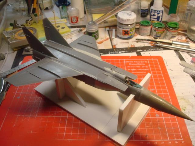MIG 25 R  (Condor+Armory ) Dsc04431