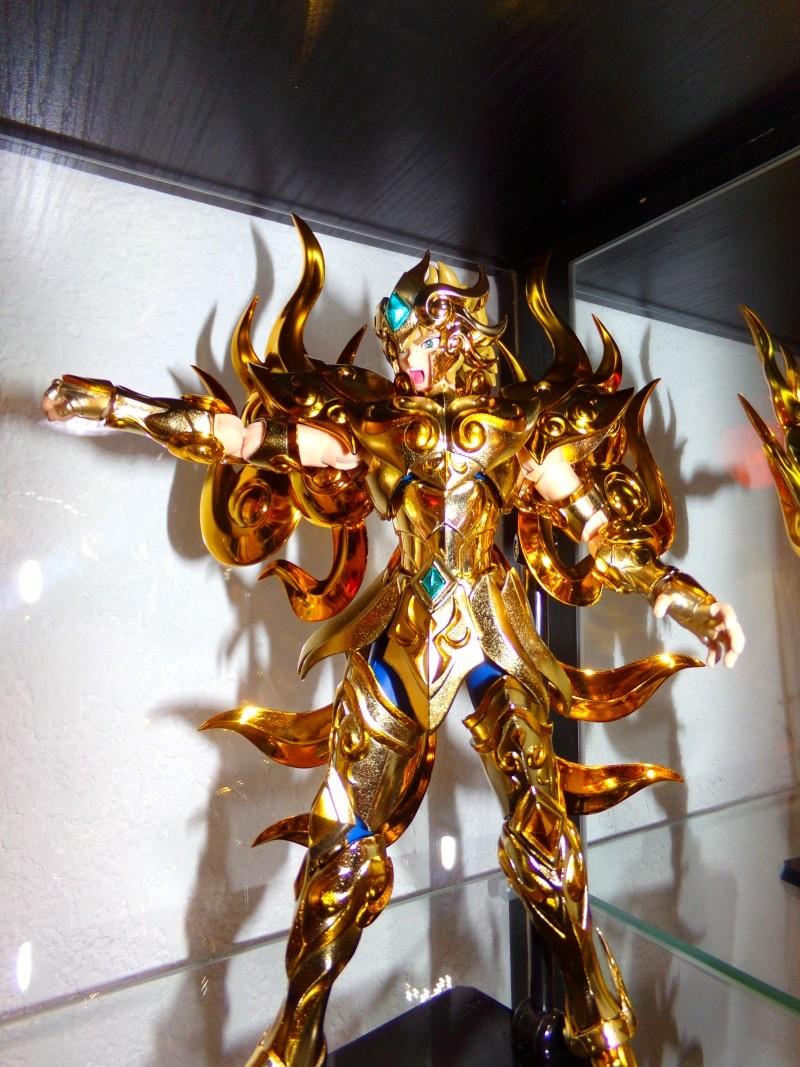 Les photos/montages de votre Myth Cloth EX du Lion Soul of Gold (God Cloth) - Page 4 100_0010