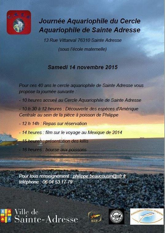 Journée aquariophile au club de Sainte Adresse 76310 le 14/11/2015 Captur37
