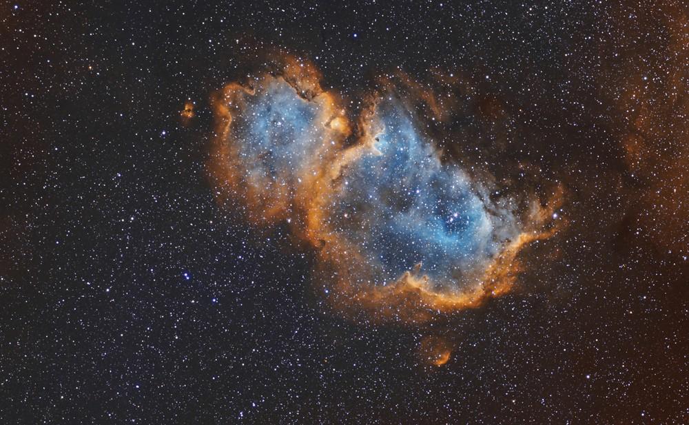 IC1848, l'ame en SHO en betagne Ic184812