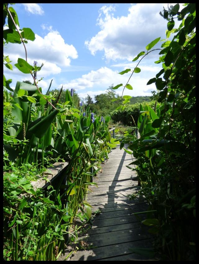 (24) Les Jardins d'Eau - Carsac-Aillac (Sarlat) Nynu_211