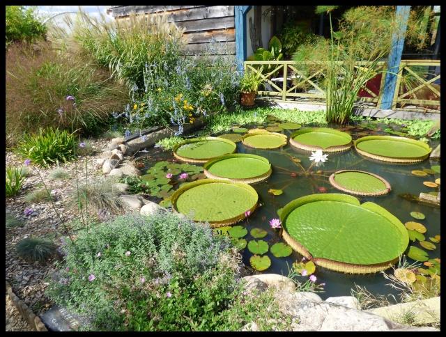 (24) Les Jardins d'Eau - Carsac-Aillac (Sarlat) Nynu_511