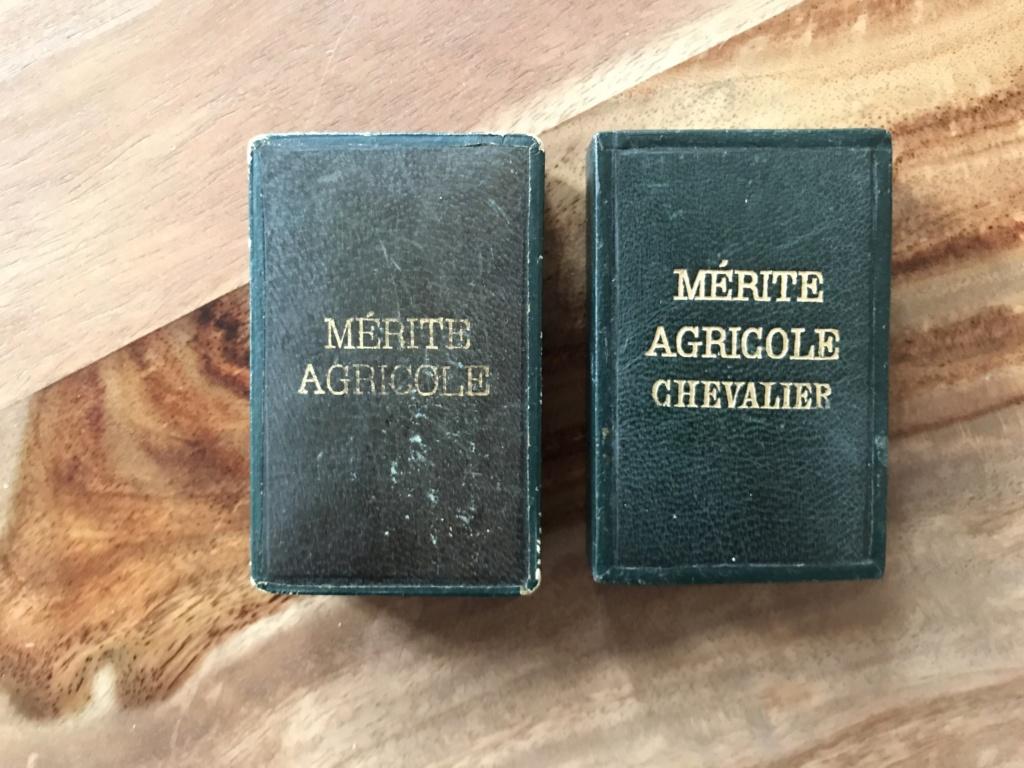 Portraits du maréchal Pétain en pagaille + médailles diverses (LH, St Mihiel...) Dc1f3710