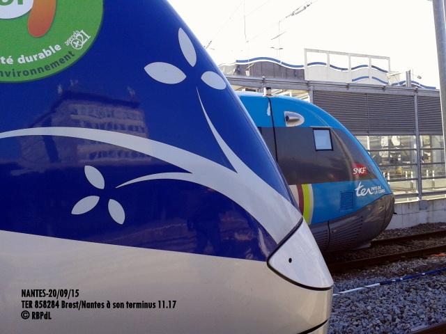 """""""Ambiance Nantes 20/09/15"""" (1) 1-201217"""