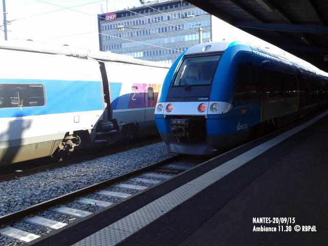 """""""Ambiance Nantes 20/09/15"""" (1) 1-201219"""