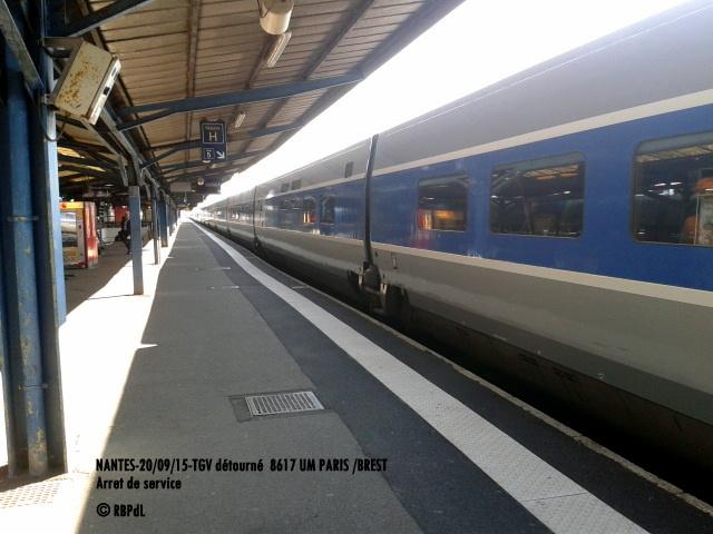 """""""Ambiance Nantes 20/09/15"""" (1) 1-201220"""