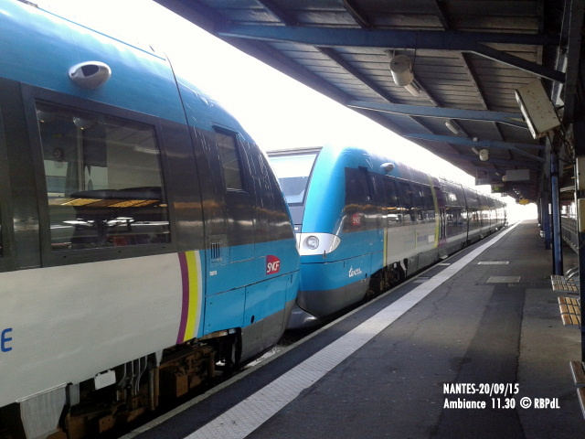 """""""Ambiance Nantes 20/09/15"""" (1) 1-201221"""