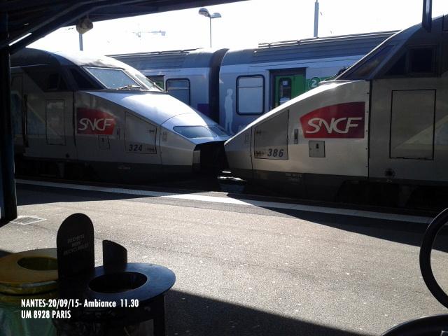 """""""Ambiance Nantes 20/09/15"""" (1) 1-201222"""
