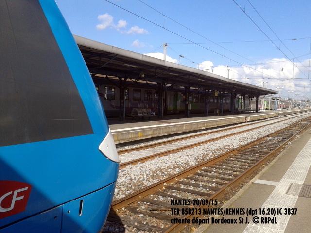 """""""Ambiance Nantes 20/09/15"""" (1) 1-201233"""
