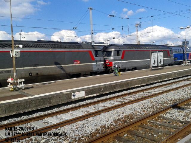 """""""Ambiance Nantes 20/09/15"""" (1) 1-201237"""