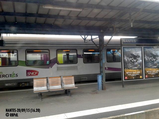 """""""Ambiance Nantes 20/09/15"""" (1) 1-201239"""