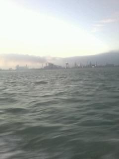 sortie en mer le lundi O2 novembre Photo043