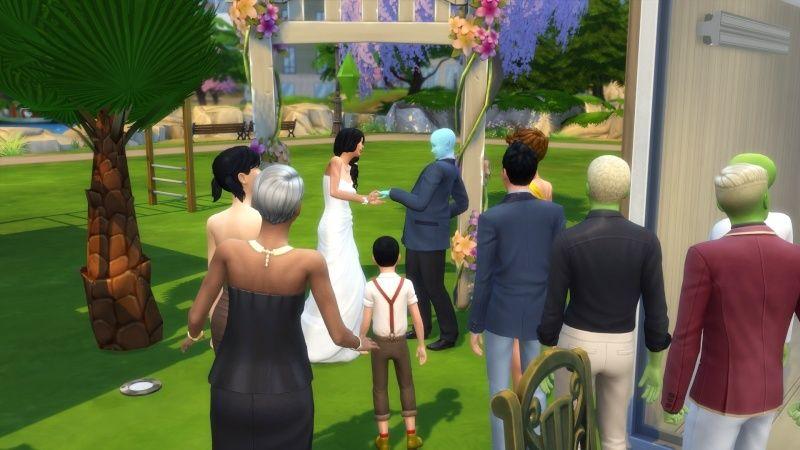 4) Mariage, mon fils ressemble à Harry Potter et nouveau SPA! 11-10-14