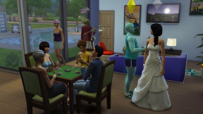 4) Mariage, mon fils ressemble à Harry Potter et nouveau SPA! 11-10-18