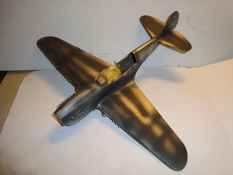 P-40 N Eduard 1/48° Dsc01512