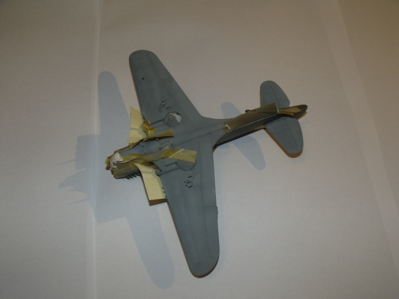 P-40 N Eduard 1/48° Dscf6220