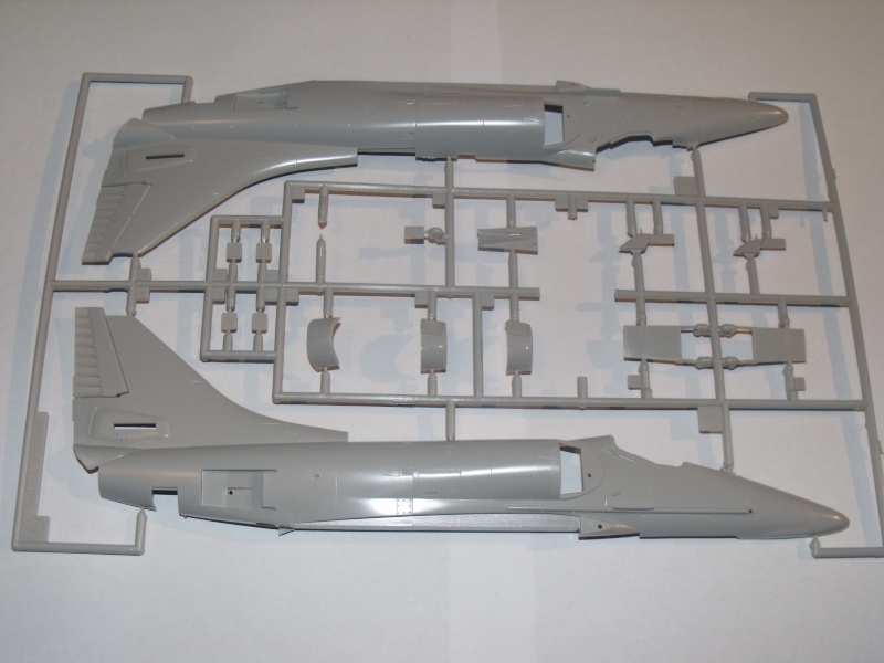 "A-4 E/F Skyhawk - Eduard ""Vietnam Scooters"" limited edition 1/48°. Dscf6230"