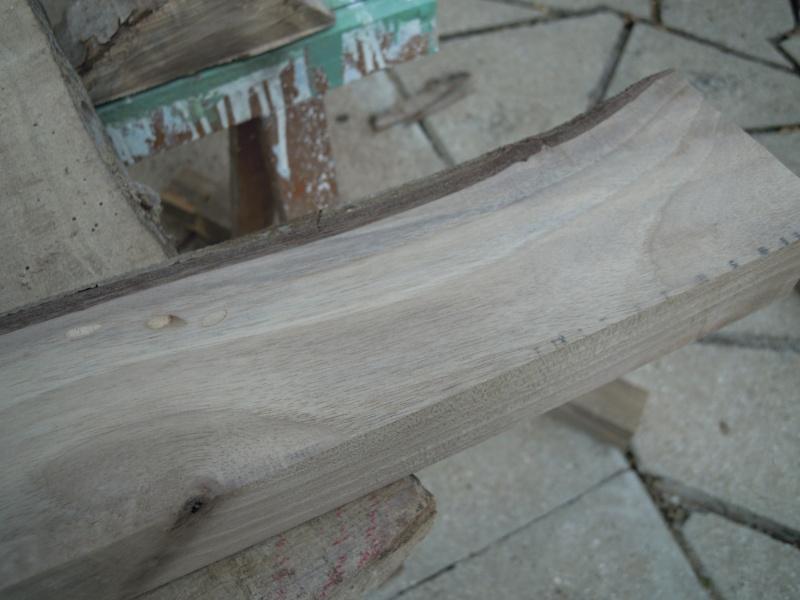Quel est ce bois ? Dscn2532