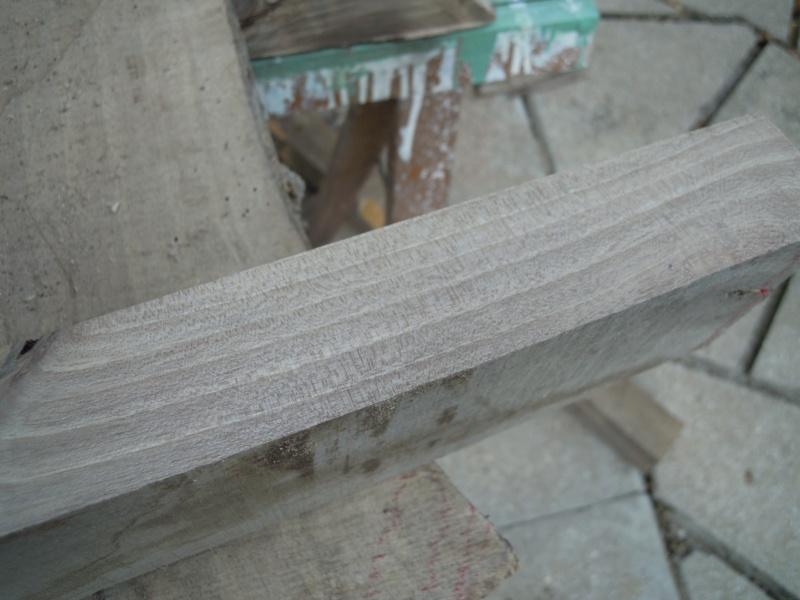 Quel est ce bois ? Dscn2533