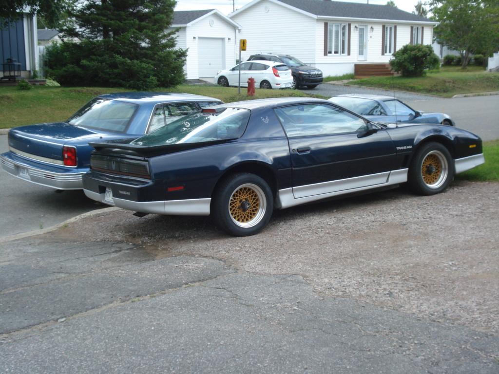 Corvette C4 (1984-1996)  Dsc07515