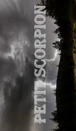 Petit Scorpion Petit_11