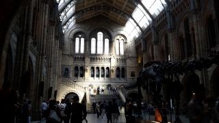 Nos expériences londoniennes - Voyages à Londres 20150912