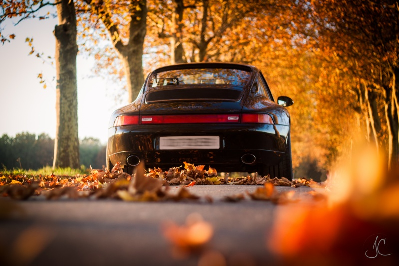 Porsche en automne - Page 3 Porsch10