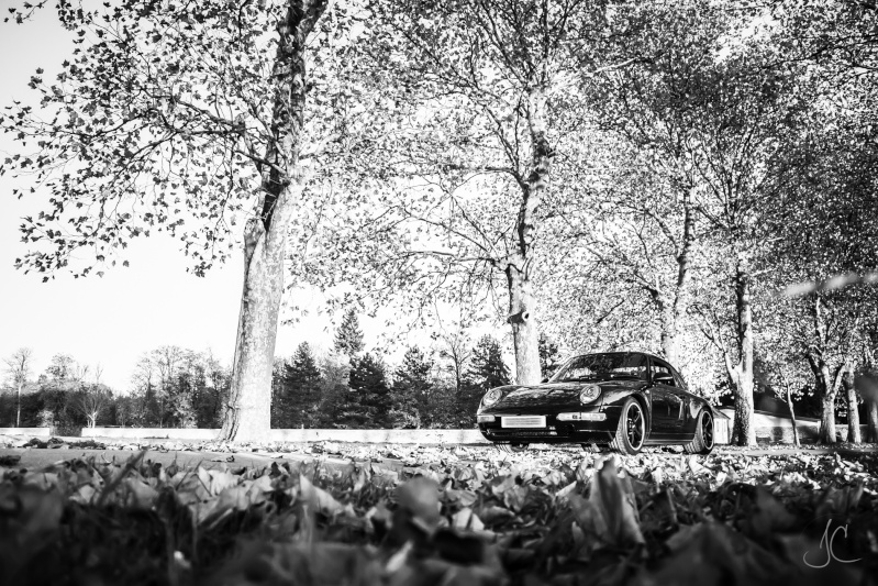 Porsche en automne - Page 4 Porsch12