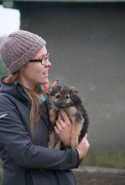 MICUTZA - Chiot femelle petite taille née en août 2015 - à Remember Me Land - réservée adoption par Charlotte (dpt01) Captur16