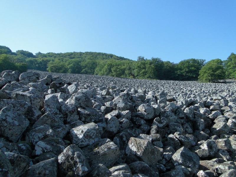 Anciennes coulées basaltiques  Dsc01312