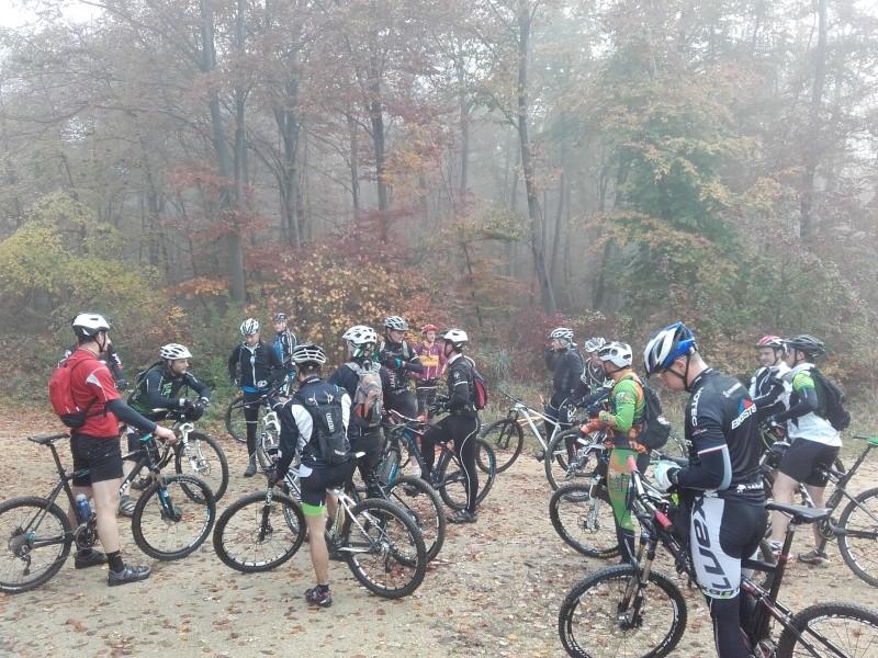 Forêt de Compiègne le 1 novembre 2015 - Page 6 20151112