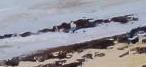 La vieille plage