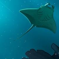 Thème Aile de mer Note12