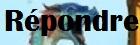 Le thème en projet Rypond10