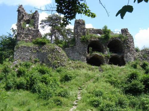 Ruine Oie_2942