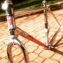 sunn tox 1995 Img_2011