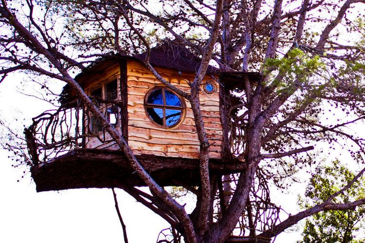 De toile, de bois ou de bric et de broc : les cabanes. 21458510