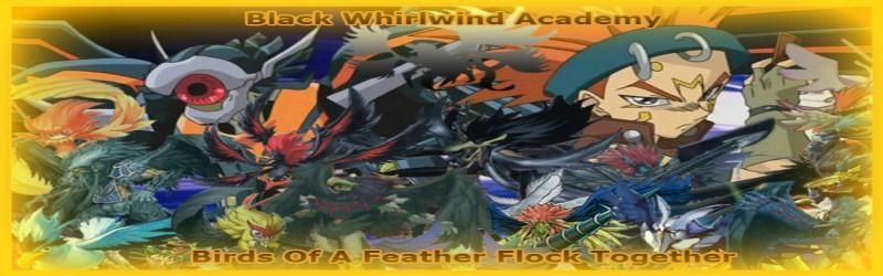 Black Whirlwind Academy