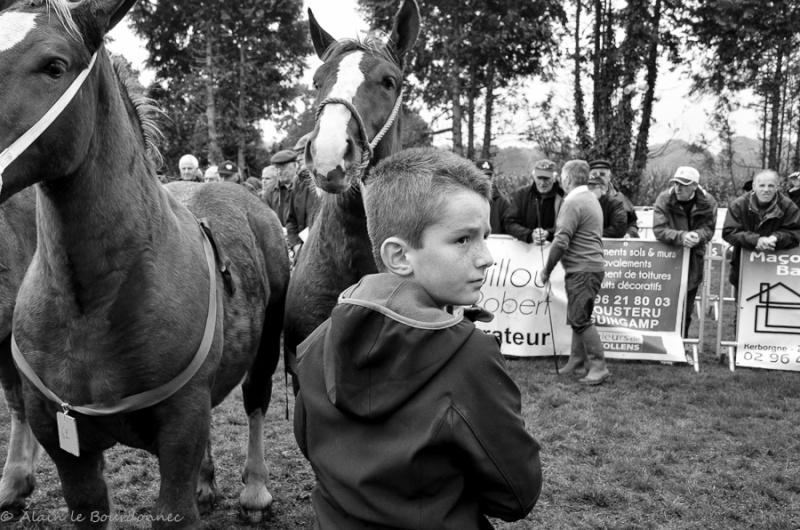 Kerien foire aux chevaux 17102011