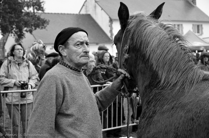 Kerien foire aux chevaux 17102013