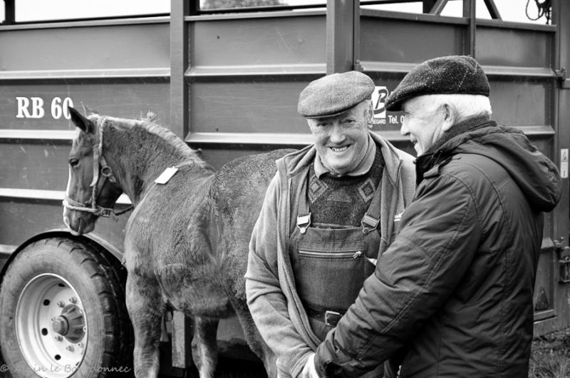 Kerien foire aux chevaux 17102016