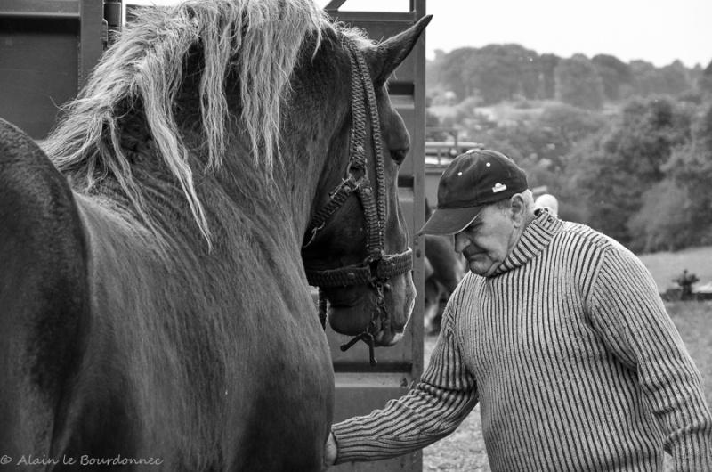 Kerien foire aux chevaux 17102020