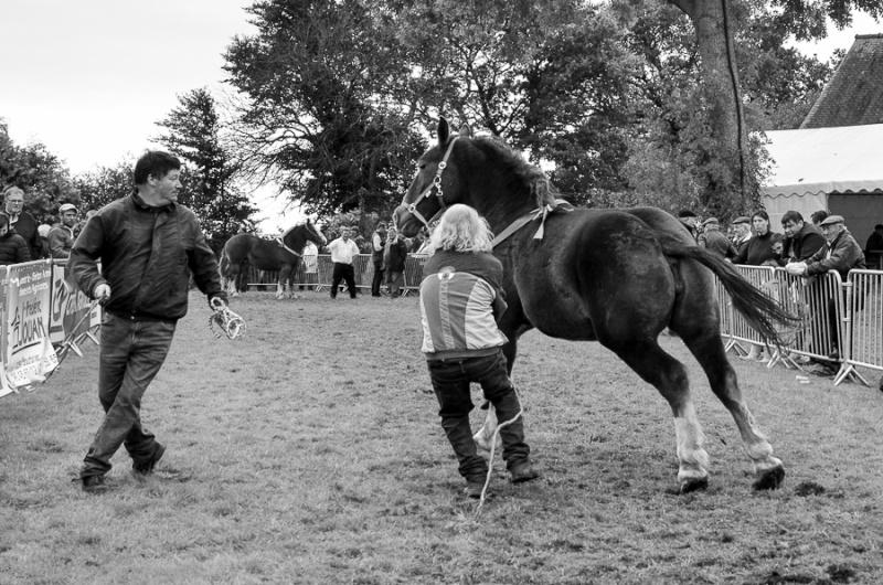 Kerien foire aux chevaux 17102022
