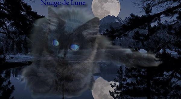 Nuage de Lune Sans_t88