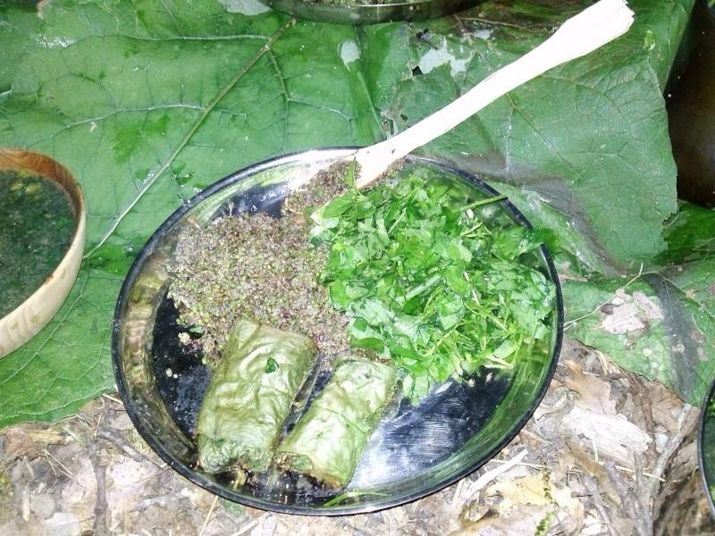 [recette] un repas sauvage ( plantain, pulmonaire, ortie...) Cam02612